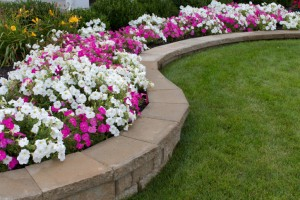 maryland-property-owners-consider-landscaping-to-attract-tenants