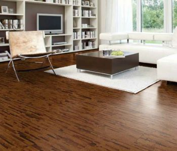 Cork flooring in baltimore county rental property