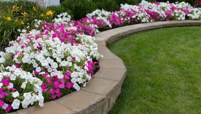 montgomery-county-md-rental-property-landscaping