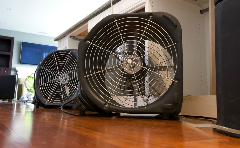 using-fans-helps-prevent-mold-montgomery-county-rental-property