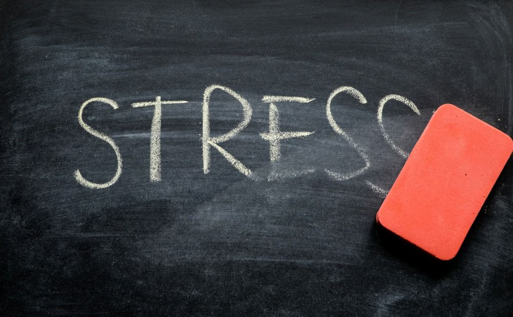 how-handle-landlord-stress-takoma-park-rental-property