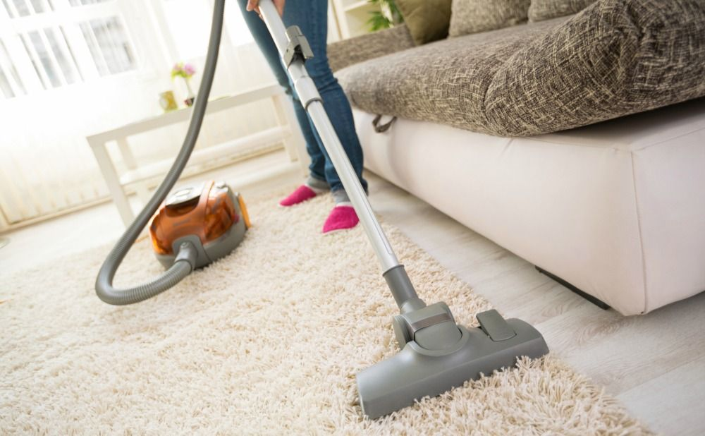 plan-annual-carpet-cleaning-baltimore-county-rental-property