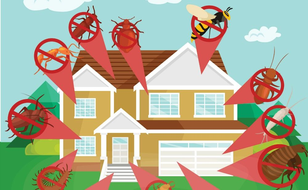 5 Rental Maintenance Tips to Keep Your Property in Top Shape