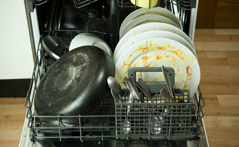 Dishwasher Receives Heavy Tenant Use and Damage in Your Takoma Park Rental