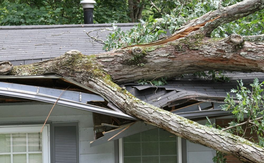 Major Causes of Roof Damages in Philly Rental Properties
