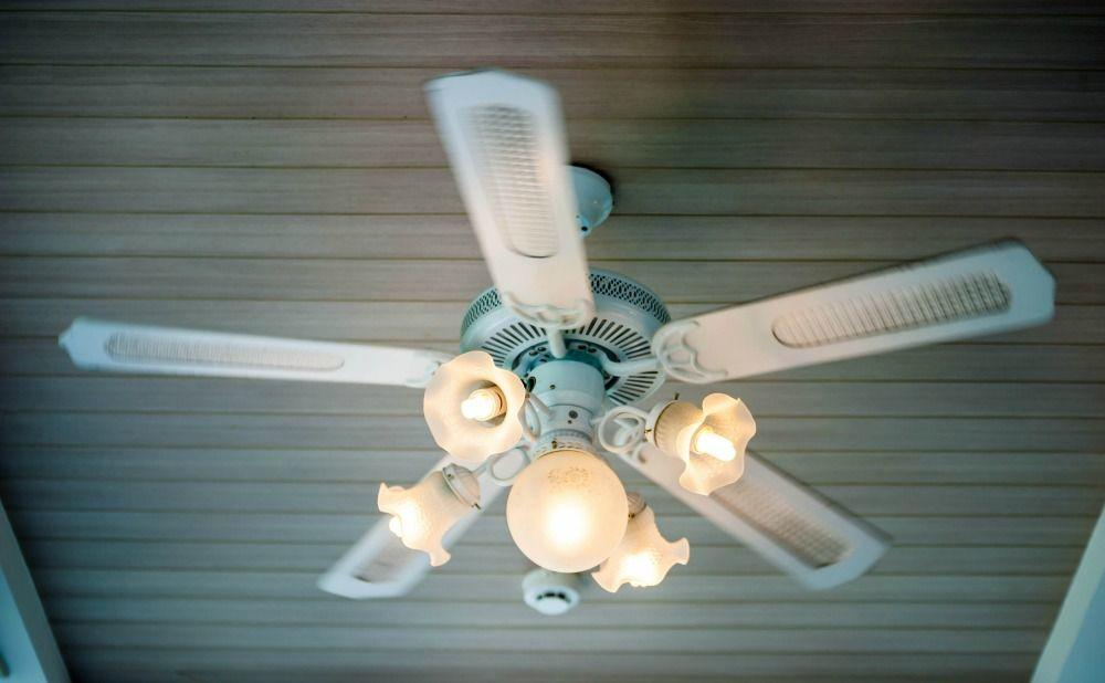 Ceiling Fans Increase Energy Efficiency in Your Fort Meade Rental