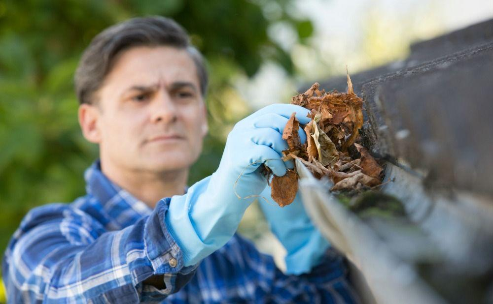 Clean Gutters for End of the Summer Maintenance in Your Philadelphia Rental Property