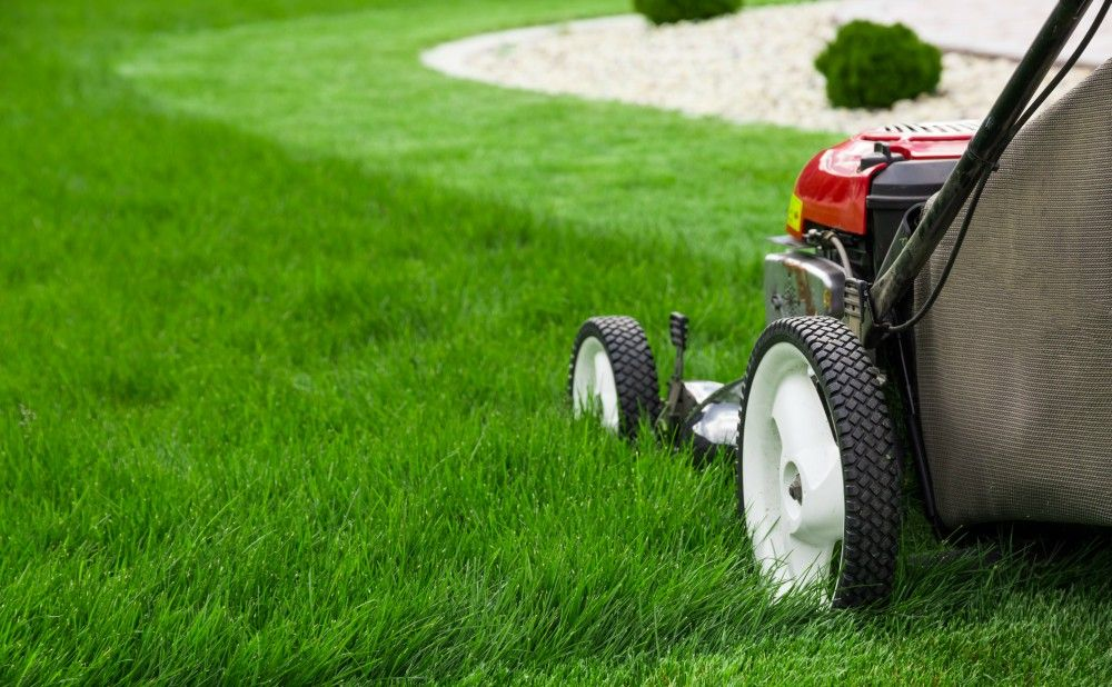 Landscapers In Philadelphia to Mow Your Rental Property Lawns