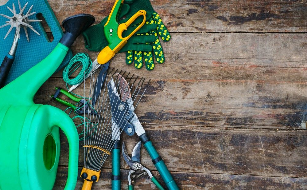 Yard Cleanups for Your Philadelphia Rental Property Landscapers