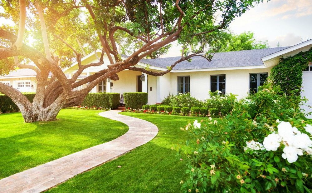 How to Make Your Rental Property Landscaping More Manageable