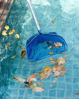 Pool Maintenance Tips for your Delaware County Rental Property