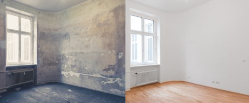 Steps for Mold Remediation and Average Cost