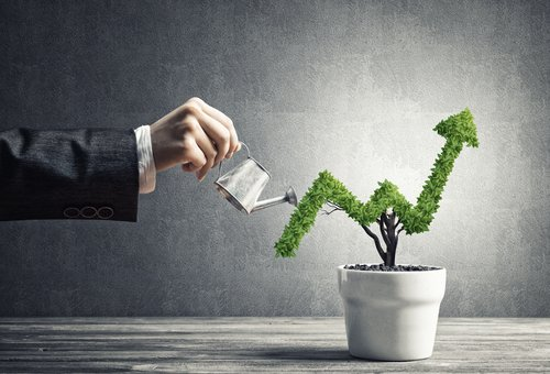 Top 8 Ways to Maximize Rental Property Profit in 2020
