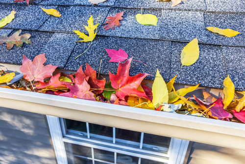 Fall Preventative Maintenance Tips for Rental Properties