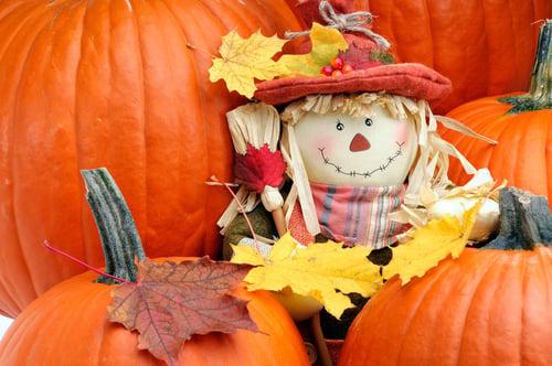 Fall Fun Amidst COVID-19 in Prince George's County