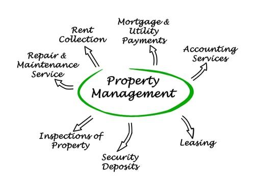 Understanding the Benefits of Professional Rental Property Management Companies