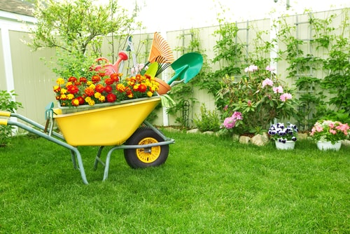 Other Ways to Boost Curb Appeal