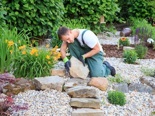 Rental Landscaping Tips for Choosing Low Maintenance Plants
