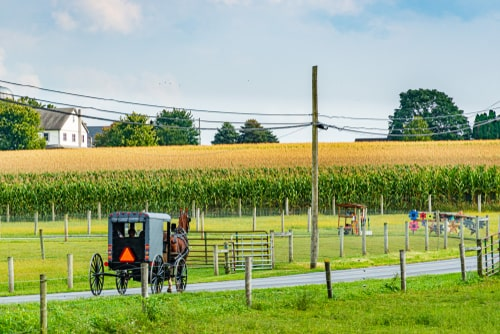 Experience Amish Culture